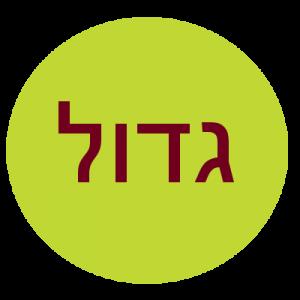 """גדול (26-28 יח')- 180 ש""""ח"""
